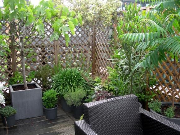 terrasse sud sous la pluie (640x480)